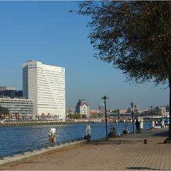 Ook Rotterdam