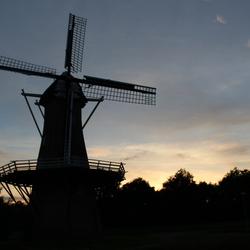 Hollandsglorie