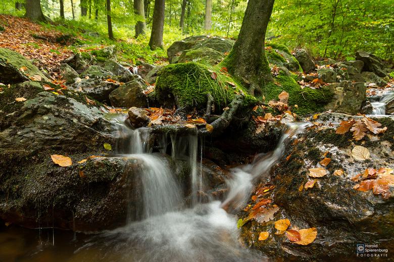 De kleuren van de herfst - Een aantal uren rijden om een stromend riviertje te kunnen fotograferen. In Nederland is hierin weinig keuze en we moeten h