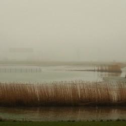 Mist....nu in kleur......