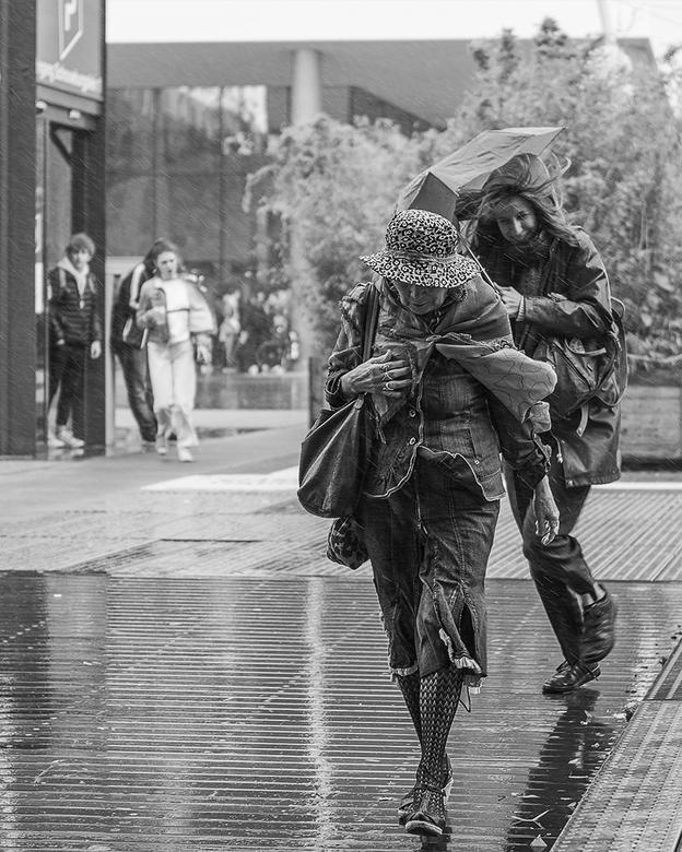 Rainy day in Rotterdam -