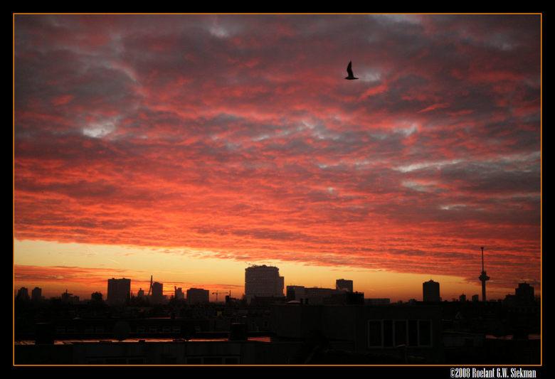 Goedemorgen Rotterdam! - Ik heb lang getwijfeld tussen de foto's, de ene nog kleuriger dan de andere, en deze waar zowel de Erasmusbrug als de Eu
