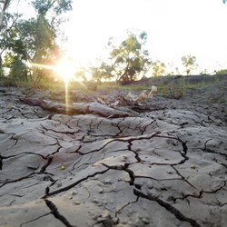 Sunset in the drought