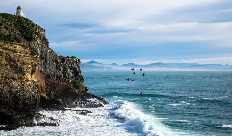 Otago Peninsula - Nieuw Zeeland
