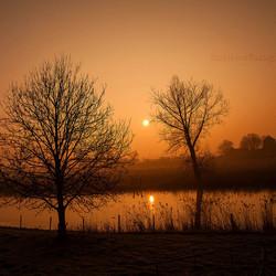 MM-Misty Morning in Rhenoy