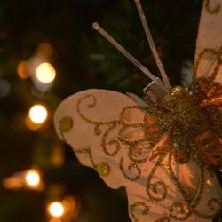Vlinder met bokeh