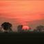 Zonsondergang Justerpad Loppersum