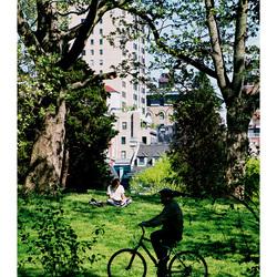De fietser en de lezer