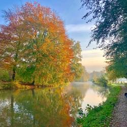 Herfst langs rivier Krommerijn