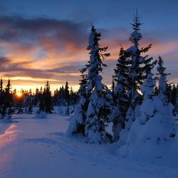 Nordseter - Noorwegen