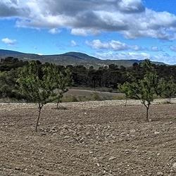 Panorama Spaans landschap